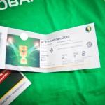 DFB-Pokalfinale 2010